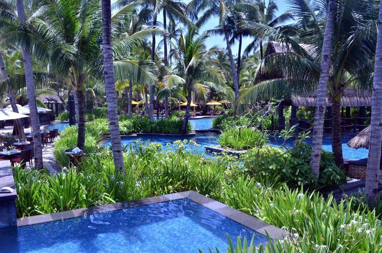 bazén v tropech.jpg