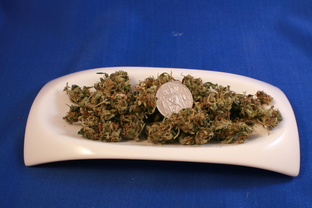 sušené květy marihuany